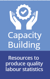 Capacity building. Resources to produce quality labour statistics